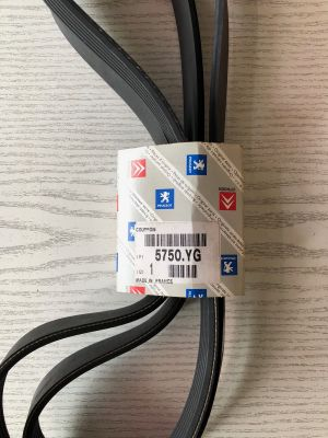 Citroen 1.9/2.0HDi multiriem NIEUW EN ORIGINEEL 5750.YG
