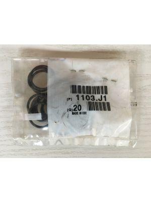 Citroen O-ring olie en onderhoud 1103.J1