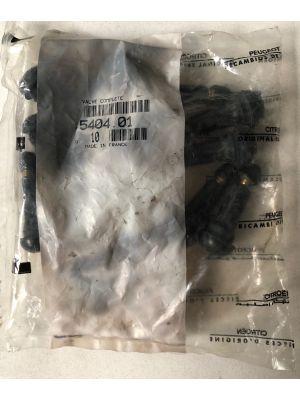 Citroen ventiel NIEUW EN ORIGINEEL 5404.01