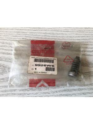 Citroen ZX cilinderslot NIEUW EN ORIGINEEL 9926.W6
