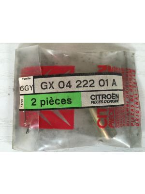 Citroen GS opvulbus (uitlaat)